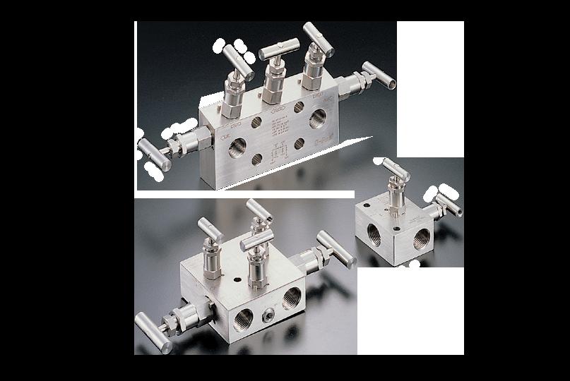 photo of v46 and v56 series instrument manifolds